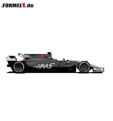 Der Haas VF-17 als Zeichnung: Eine Revolution ist das Farbschema nicht ...