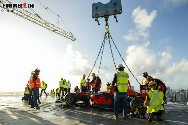 Donuts in 200 Metern Höhe: David Coulthard (Red Bull) auf dem One-Thousand-Museum-Wolkenkratzer in Miami mit dem RB7