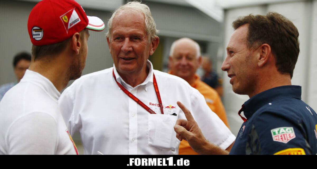 """Helmut Marko: Sebastian Vettel macht """"ungewöhnlich viele Fehler"""" - Formel1.de-F1-News"""